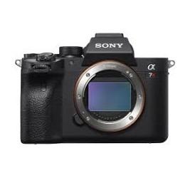 Home -SONY A7R IV